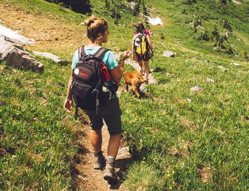 Ορειβασία /  Πεζοπορία